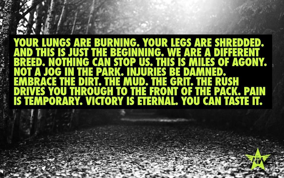 Nike-VictoryIsEnternal-Running-QuoteRunning Quotes Nike
